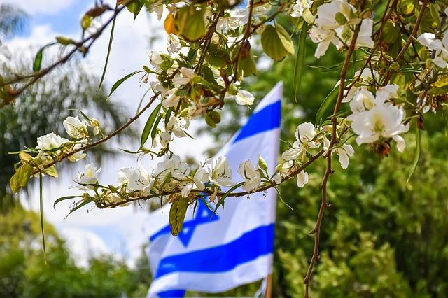 Izraelska zastava